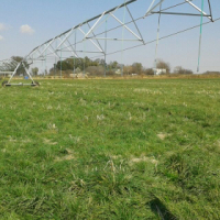 70ha farm in the Potchefstroom area