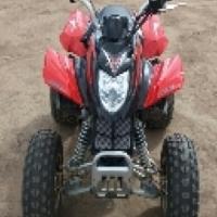 250cc arctic cat automatic mint condition