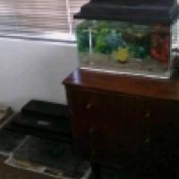 Five Different Fish Tank & Accessories