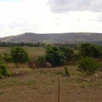 Land for sale 112 hectare