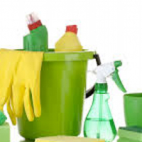 Horizon Swiss cleaning services
