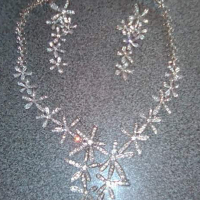 Real silver necklace with ear rings