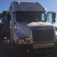 Freightliner Century for sale