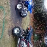 suzuki ltz400 en yamaha 200blaster en bike trailer