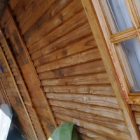 Wooden Wendy houses for sale - 5m x 10m (or two 5m x 5m) and 2m x 2m