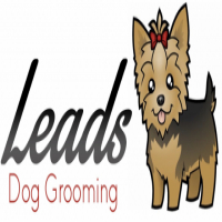 Dog groomer needed - Cape Town,Sunningdale