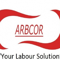 LABOUR CONSULTANT & PAYROLL SERVICES