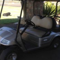 4x Seater Golf Cart
