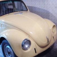 Beetle body geen papier