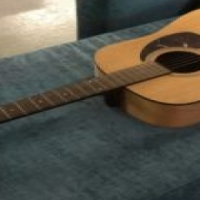 Segal acoustic guitar