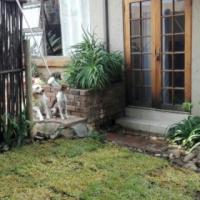 Garden room for rent