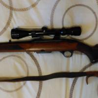 Winchester .308 SEMI AUTO rifle