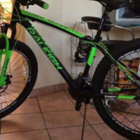 Raleigh MXR 29er Mountain Bike