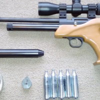 Pellet Gun/Target Pistol