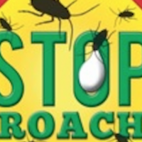 Stop Roach Gel