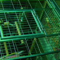 large high quality parrot cage