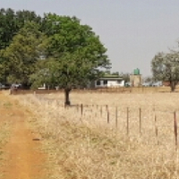Small farm for Sale!