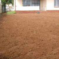 Turf Supply for Parks & Gardens Managers
