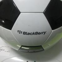 Everlast soccer ball cooler and warmer