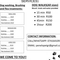 Pawwy: Ruimsig Dog Walking and washing services