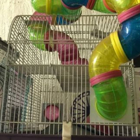Hamster cage for sale