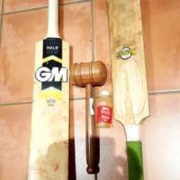 Cricket gear, bats, pads, helmet, extras and GM bag