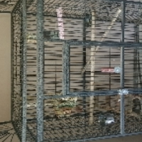 parrot cage and fish tank for sale