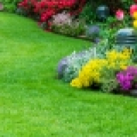 ON GARDEN AND CLEANING SERVICES