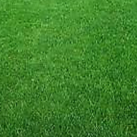 Affordable lawn dressing, topsoil, compost, grass supply and laying and more