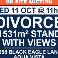Auction: Stand in aqua Vista