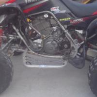 660 Raptor 2006