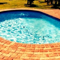 SWIMMING POOL SERVICES - CALL 083 305 7768