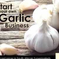 Start your own Garlic Business