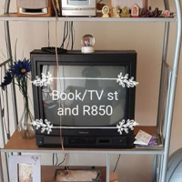 Tv/book self stand