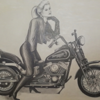 Harley sketch for sale