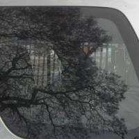 Honda CRV I quarter glass for sale!!!