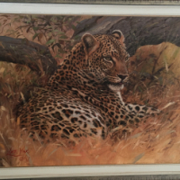 Original Wild Life Oil Paintings for Sale by World renown Artist Lute Vink