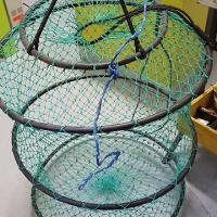 Kip net