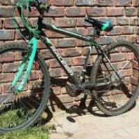 Raleigh rocks fiets (nie brieke of ratte)