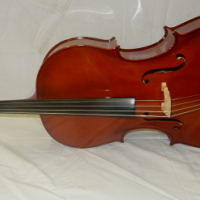 Flame Lily Cello