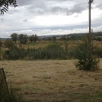 4 500sm piece of land to rent / Near Lanseria / Just off Molebongwe Dr / Ref 4 500sm