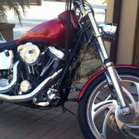 Harley Davidson Custom Softail complete with Quick loader trailer