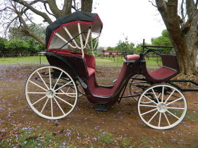 Horse and carriage for hire.