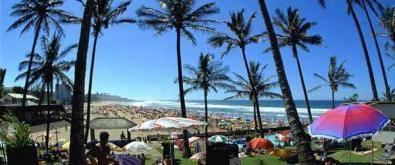 Established Garden Service For Sale KZN South Coast