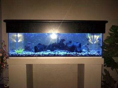 Fishtank For Sale (4ft) + All Equipment