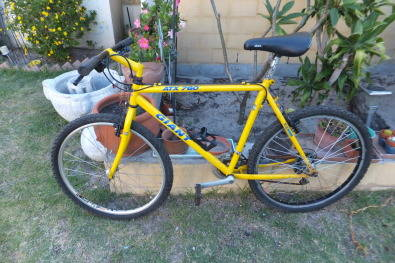Giant Atx 760 Old School Mountain Bike Serviced Junk Mail