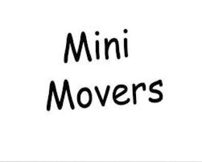 Mini Movers for furniture removals 0118051425