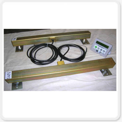 Animal Weighing /Cattle/Sheep/Pig Scales