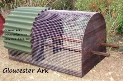 Gloucester Chicken Ark
