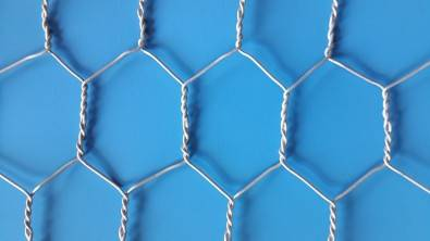 25mm CHICKEN WIRE
